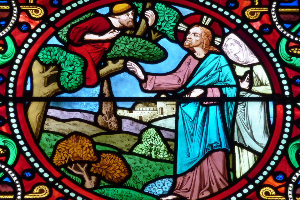 Zacchaeus Stained Glass